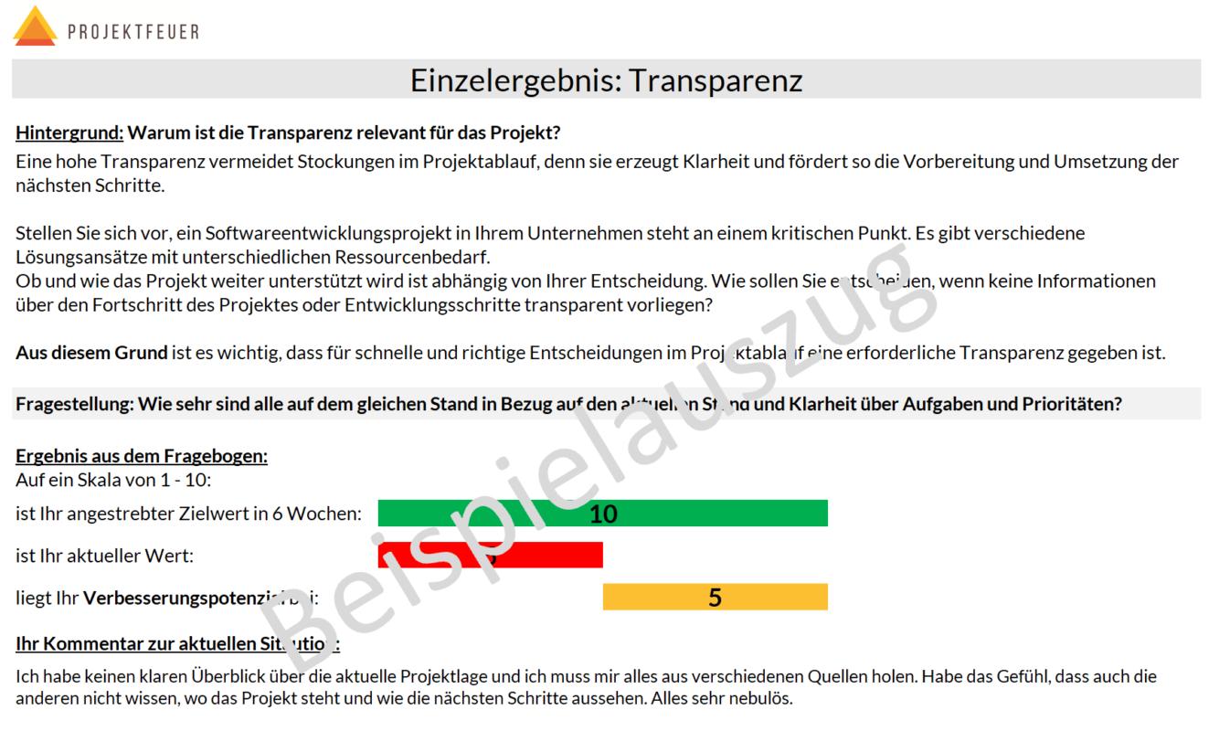 Beispielauszüge für eine Auswertung aus dem Online-Fragebogen, um Potenziale im Projektablauf zu erkennen.